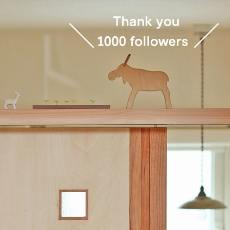 Thank you 1000 followers.jpg